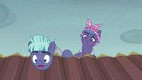 "McColt stallion ""you're an Alicorn!"" S5E23"
