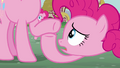 Pinkie Pie 'same adorable hooves' S3E03.png