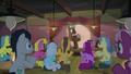 Pony MC presenting Maud Pie S8E3.png