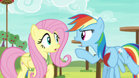 Rainbow --you totally gotta get this drill down!-- S6E18