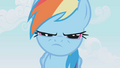 Rainbow Dash narrow eyes S01E04.png