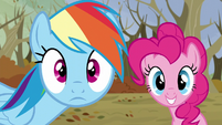 Rainbow and Pinkie sees their friends S5E5