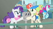 Rarity and a tourist touching the binocular S4E08