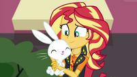Sunset Shimmer holding Angel Bunny EGFF