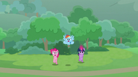 Twi, RD, and Pinkie burst out of the bushes S9E25