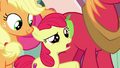 "Apple Bloom ""isn't your name Mrs. Cake?"" S7E13.png"