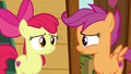 Apple Bloom and Scootaloo look at each other S6E19.png