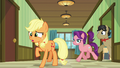 Applejack, Filthy, and Spoiled back in the hallway S6E23.png