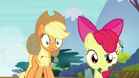 Applejack -what in tarnation are you doin'-!- S5E4