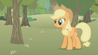 Applejack standing in the middle of the farm S1E12