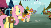 Fluttershy never seen S02E19