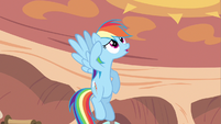 Rainbow Dash not sure S2E20