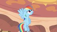Rainbow Dash not sure S2E20