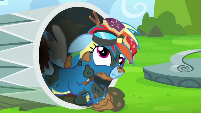 File:Rainbow dizzy and covered in trash S6E7.png