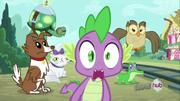 S03E11 Zaskoczony Spike