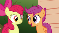 Scootaloo --doesn't mean it can't-- S6E19