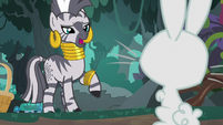 "Zecora ""that might bring an end"" S9E18"
