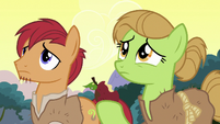 Apple farmer ponies looking at a dead tree S7E16