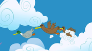 Ducks flying S1E23