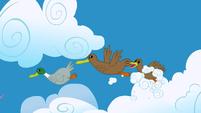 Ducks flying S1E23