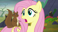 Fluttershy calls Twilight's name S5E23