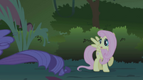 """Fluttershy cries """"Wait!"""" when Rarity runs away S1E02"""