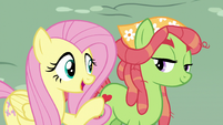 Fluttershy introduces Discord to Tree Hugger S5E7