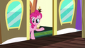 """Pinkie """"Where's all the snow?"""" S5E11.png"""
