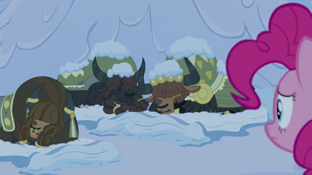 File:Pinkie Pie looks at cold and shivering yaks S7E11.png