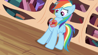 Rainbow Dash looking at element S3E13
