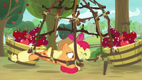 Applejack dives under trap with Apple Bloom S9E10