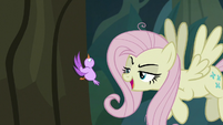 "Fake Fluttershy ""why don't you fly up"" S8E13"