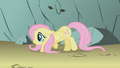 Fluttershy creeps through avalanche zone S1E07.png