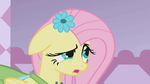 Fluttershy looks at Rarity S1E14