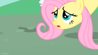 Fluttershy lowers her head so the mice can reach the ground safely S1E26