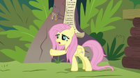 Fluttershy wants Angel to come back S9E18
