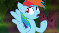 Rainbow Dash -it's all right, I guess- S8E17