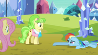 Rainbow Dash drags across the ground S03E12
