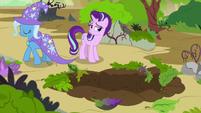 Starlight Glimmer amused by Trixie's aloofness S7E17