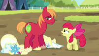 Apple Bloom angry -I should've known- S5E17