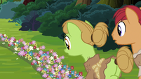 Apple farmer ponies looking at trail of flowers S7E16