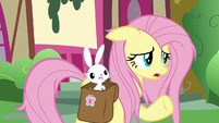 "Fluttershy ""keep an eye on Zecora's gecko"" S9E18"