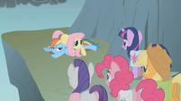Fluttershy forgot to jump S01E07