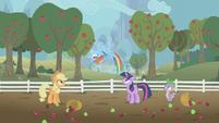 Rainbow Dash flipping for joy S1E03