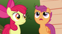 Scootaloo --just because it hasn't happened yet-- S6E19