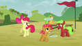 Apple Bloom 'Do they wanna be Crusaders' S3E08.png