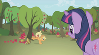 Applejack knocks an apple bucket over S1E04
