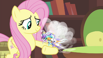 Breezies perched on Fluttershy's hoof S4E16