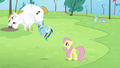 Fluttershy and Rainbow seeing Bulk flying S4E10.png