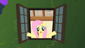 Fluttershy looks out her window S1E17.png